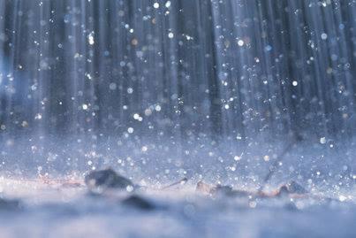 NABOKOV AND RAIN